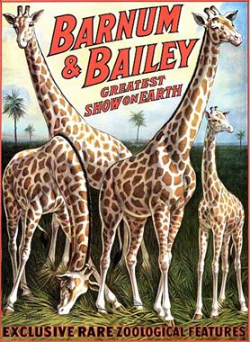 Vintage-Circus-Posters-Barnum-and-Bailey-Giraffes